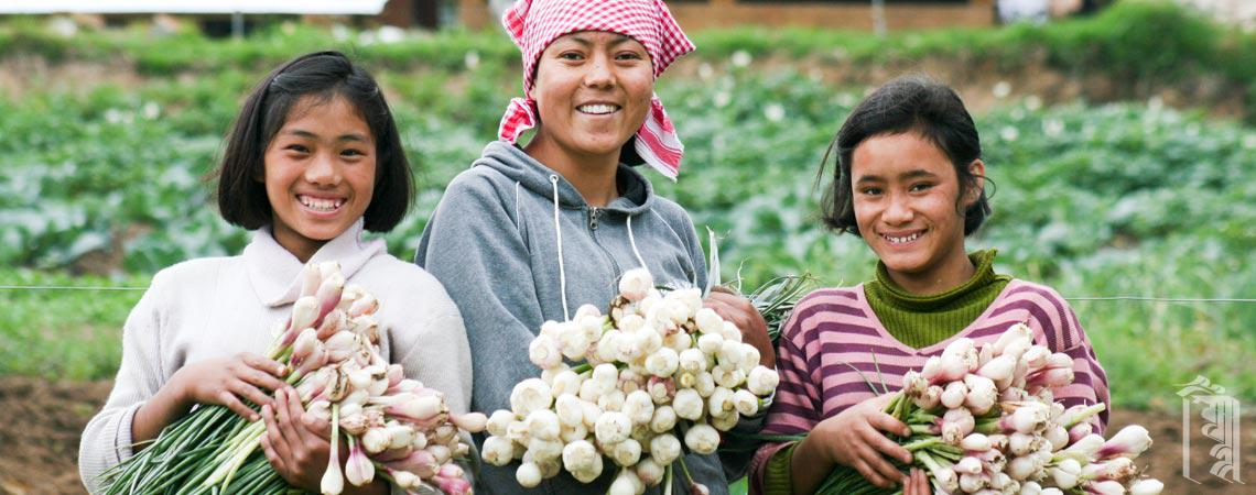 An Ama la and two girls, showing off a good harvest of garlic from the Jhamtse Gatsal gardens.